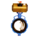 butterfly-valve-with-pneumatic-actuator-operated