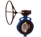 cast-iron-butterfly-valve-with-worm-gear-operated